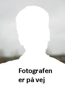 FotografenErPaaVejSmall